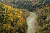 about new-york-state